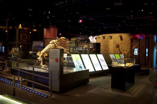 nevada museums association nevada state museum las vegas. Black Bedroom Furniture Sets. Home Design Ideas
